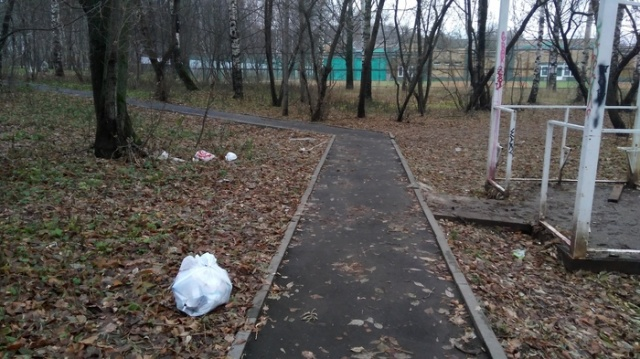 Доставка мусора на дом (5 фото)