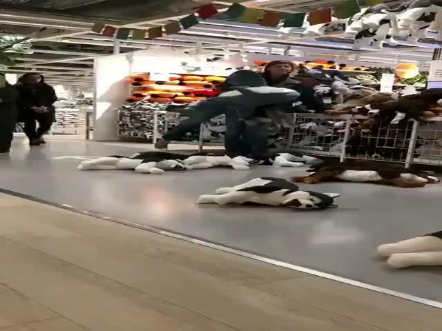 Акула из IKEA вызвала настоящий ажиотаж в магазинах