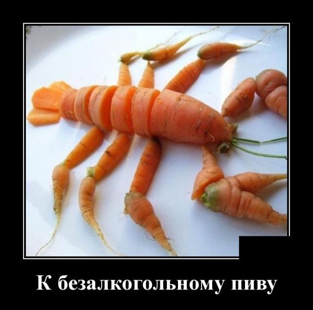 demotivatory_25.jpg