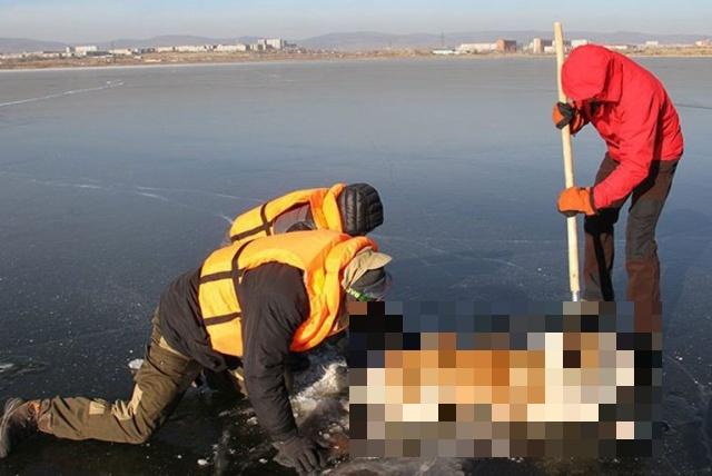 В Забайкалье спасатели случайно обнаружили пса, который попал в беду (3 фото + видео)