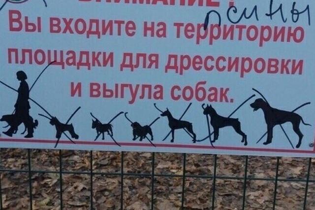 """""""Яжематери"""" против кинологов (2 фото)"""