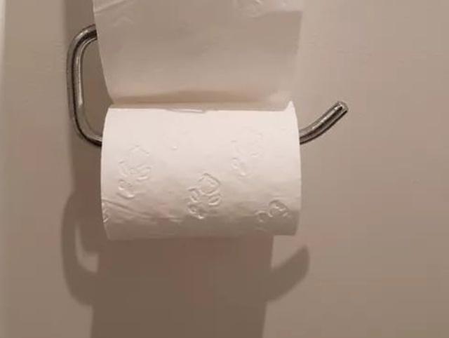 Если решили сходить в туалет в Австралии, будьте готовы к такому... (2 фото)