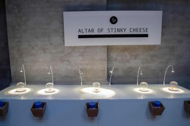 Самые странные экспонаты Музея отвратительной еды в Швеции (10 фото)
