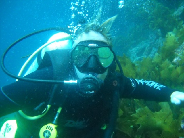 На Багамах дайвер заснял на видео, как на него напала акула (3 фото + видео)