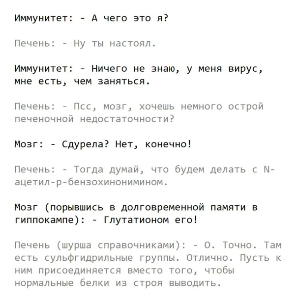 Как организм борется с инфекцией простым языком (10 скриншотов)