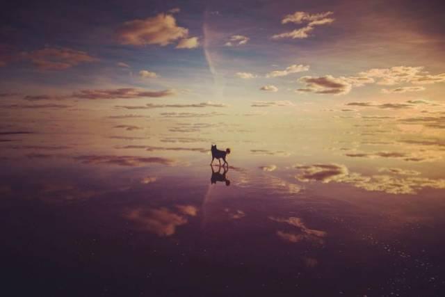 Красивые фото вместо тысячи слов (53 фото)