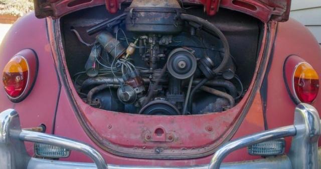 Volkswagen бесплатно восстановил Beetle, которым американка владела более 50 лет (18 фото)