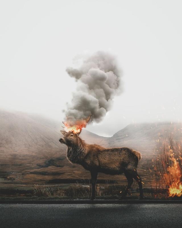 Удивительные фотоманипуляции от турецкого дизайнера Мурата Акйола (30 фото)