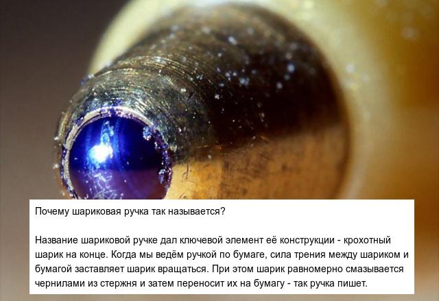Познавательные ответы на интересные вопросы (10 фото)
