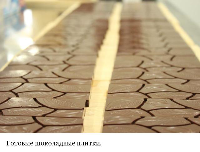 Как и из чего делают шоколад (20 фото)