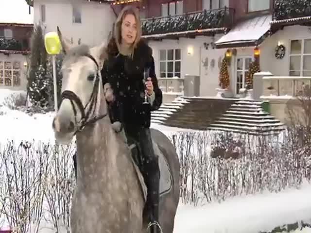 Новогоднее поздравление от Натальи Поклонской верхом на коне