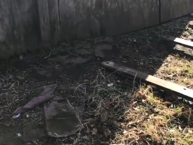 Фермер решил приподнять старый сарай, чтобы выгнать из-под него змею