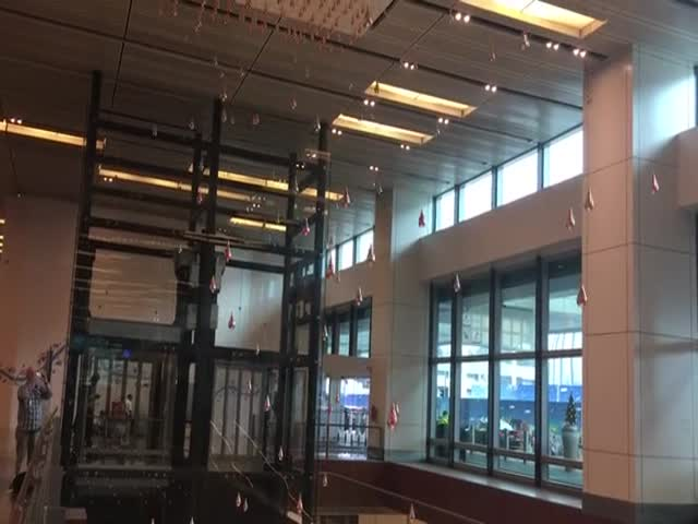 Завораживающее зрелище в аэропорту Сингапура