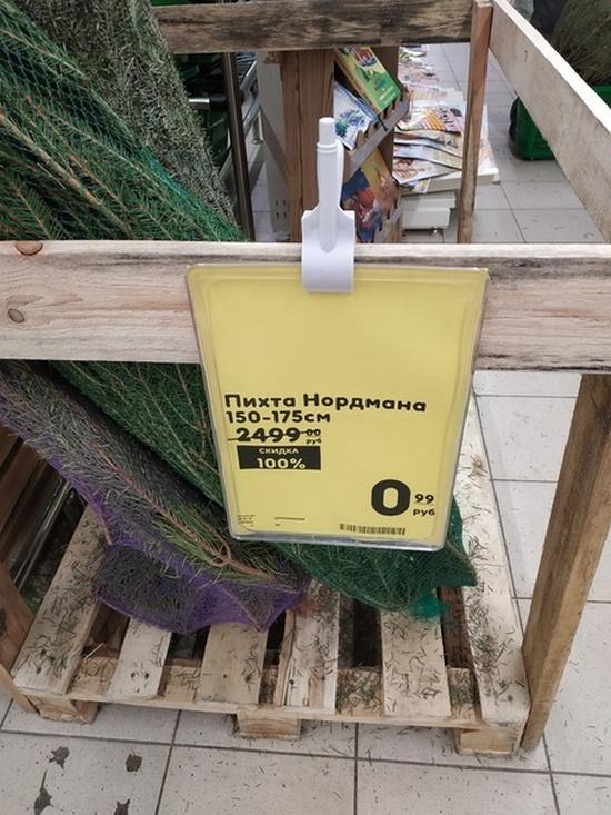 Распродажа непроданных ёлок (2 фото)