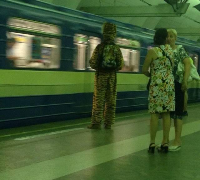 Модники и модницы, которых можно увидеть на улицах (31 фото)