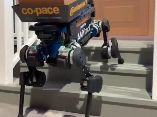 Робот-собака доставляет посылки