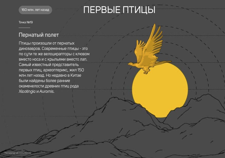 История Земли в 25 поворотных точках (25 картинок)
