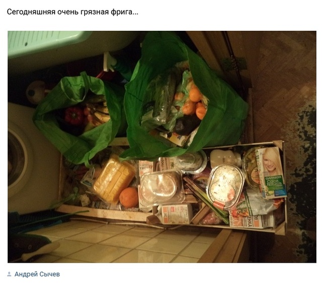 Кто такие фриганы, и чем они питаются (18 фото)