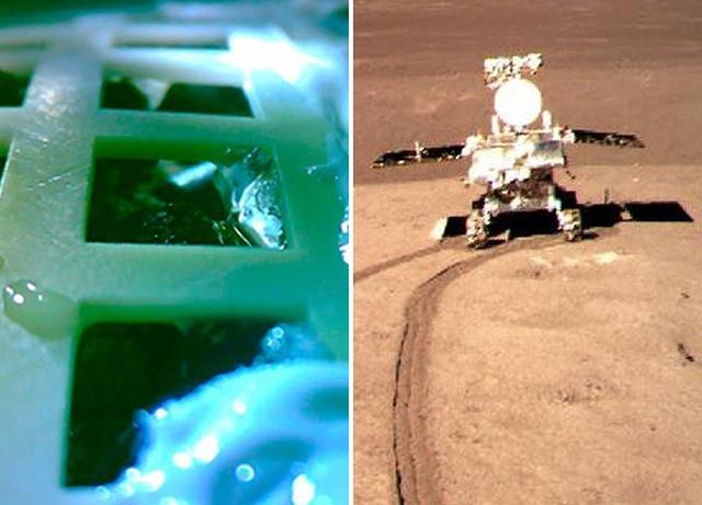 """Китайский космический аппарат """"Чанъэ-4"""" провел первый в истории биологический эксперимент на Луне (4 фото)"""