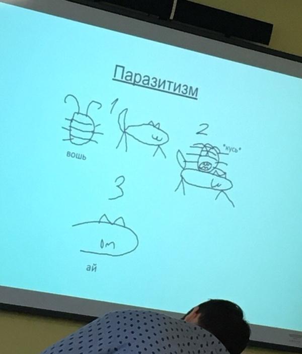 Презентация 100 уровня (7 фото)