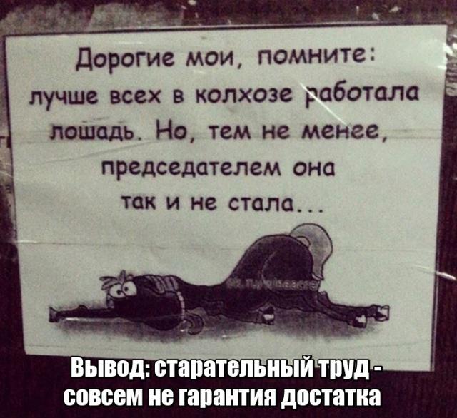 """Глубокомысленные заметки """"народных философов"""" на улицах и в общественном транспорте (17 фото)"""