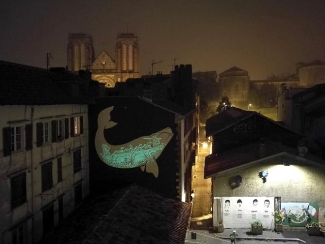 Необычное граффити в Байонне (7 фото)