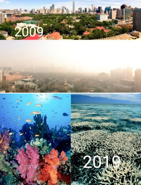 Экологические организации присоединились к 10YearChallenge (7 фото)