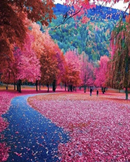 Красочные снимки вместо тысячи слов (44 фото)