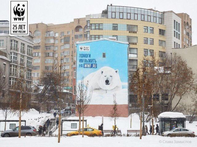 """В центре Москвы с фасада здания """"пропал"""" белый медведь (3 фото)"""