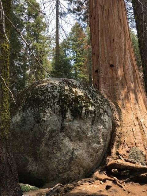 Doğaya Karşı Koyamazsınız (34 Fоtograf)