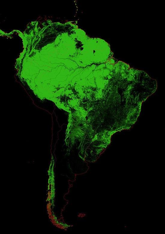 Актуальные карты лесного покрова (25 фото)