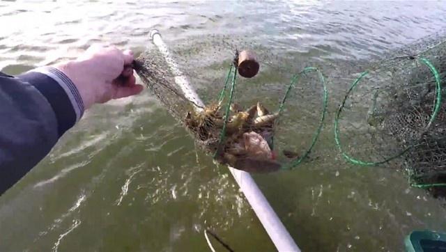 Для чего рыбакам нужна пластиковая труба, когда они рыбачат с лодки? (6 фото)