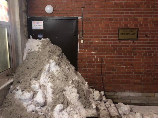 Жители Санкт-Петербурга самостоятельно расчищают дворы от снега (3 фото)