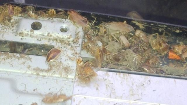 В сервисный центр принесли монитор на ремонт... (5 фото)