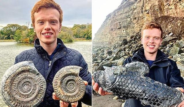 Британец нашел на пляже древнее существо, возраст которого может составлять 185 миллионов лет (3 фото + видео)