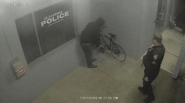 Когда полиция оказывается в нужном месте и в нужное время (17 гифок)