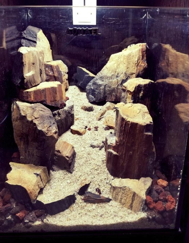 """Аквариум """"Горное ущелье"""" своими руками (9 фото)"""
