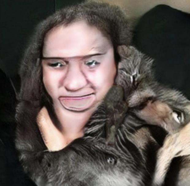 Нейросеть, генерирующая фото котов, не особо справляется с задачей (20 фото)