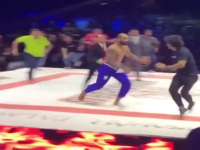 Бразильский боец Эрберт Сантуш устроил массовую драку на турнире
