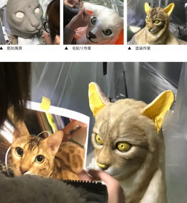 Очередная японская странность (5 фото)