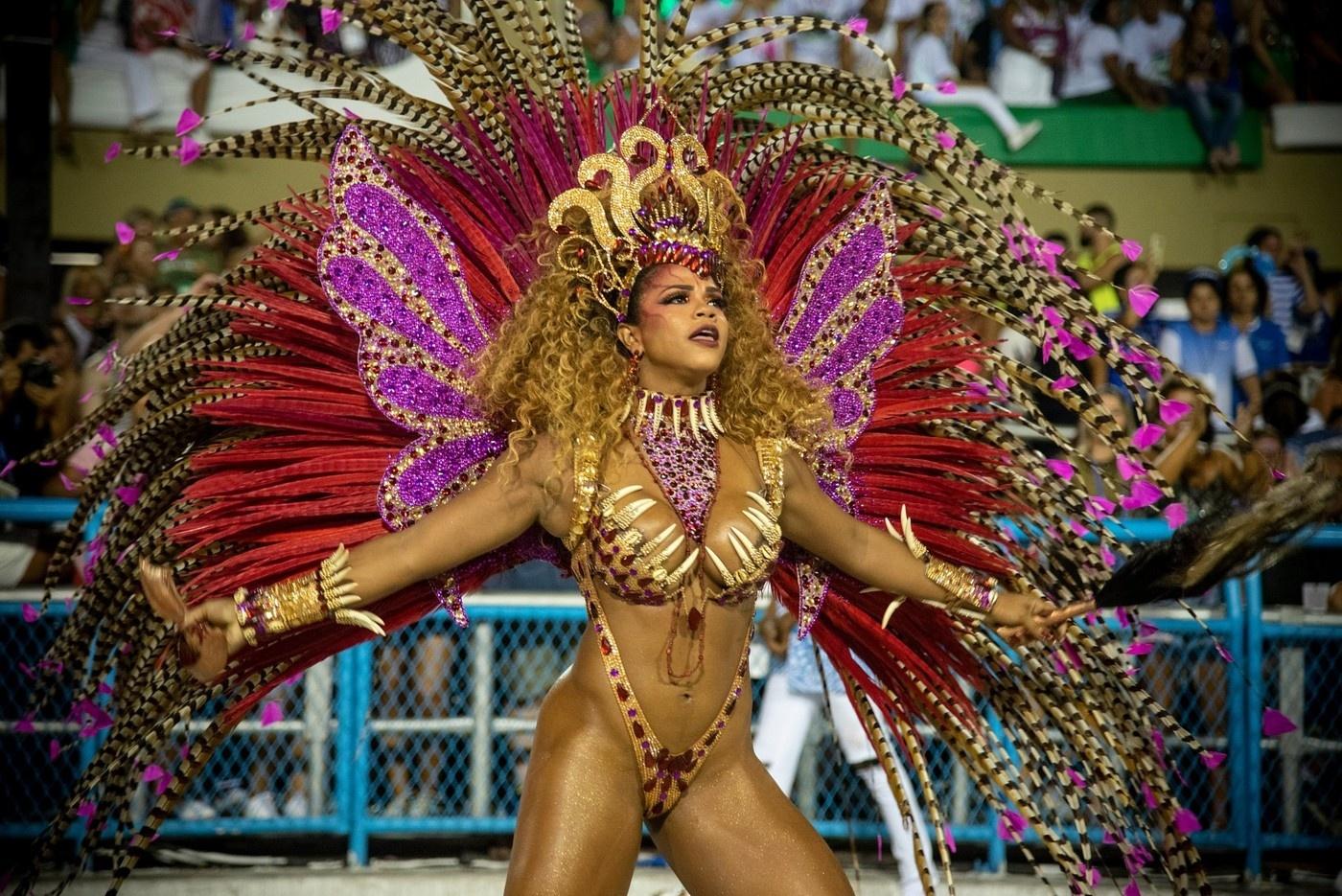 Смотреть фото бразильского
