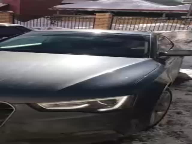 Девушка на Audi и мусор