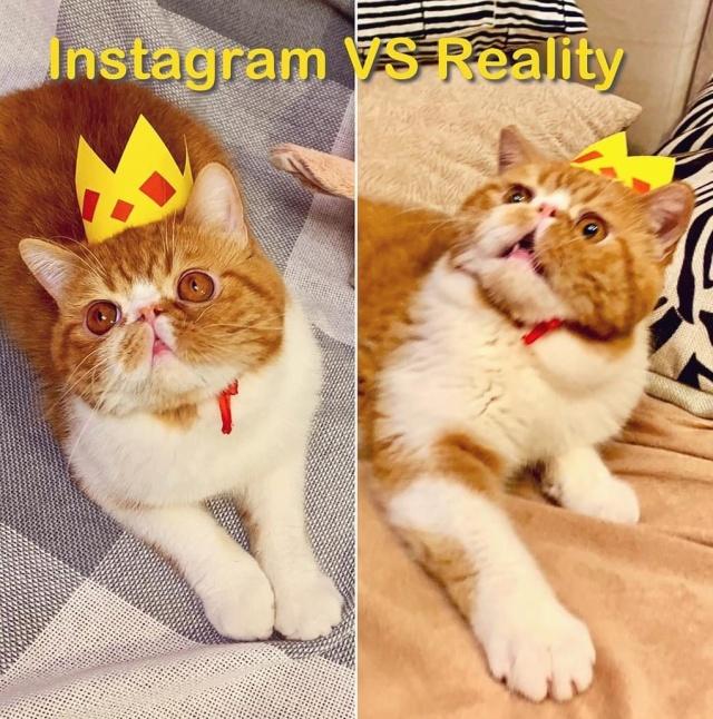 """У каждого идеального снимка в Instagram есть своя """"обратная сторона"""" (19 фото)"""
