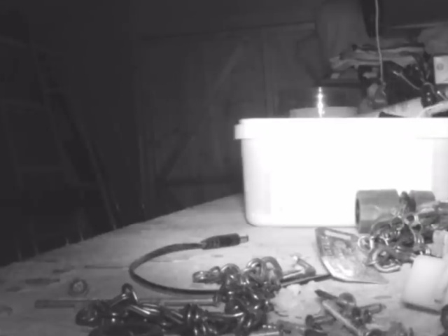 Фермер установил камеру, чтобы узнать, кто убирает за ним беспорядок в сарае