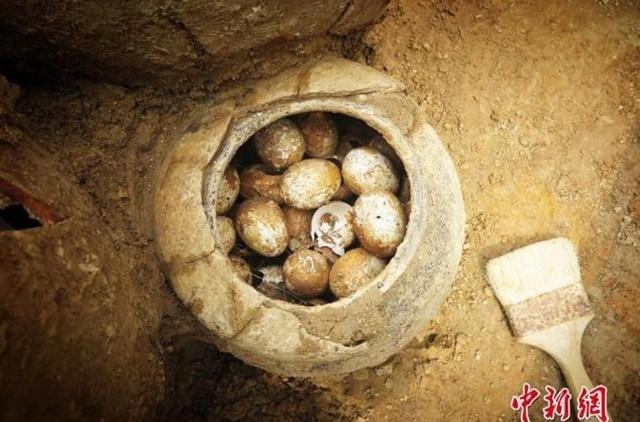 Китайские ученые нашли куриные яйца, которые были снесены 2500 лет назад (3 фото)
