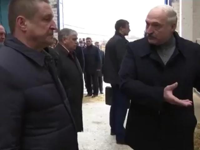 Александр Лукашенко снял с должности губернатора Владимира Доманевского после посещения агрохолдинга