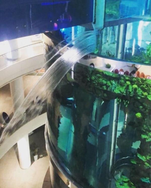 """В ТРЦ """"Океания"""" начал протекать огромный аквариум (2 фото +  видео)"""