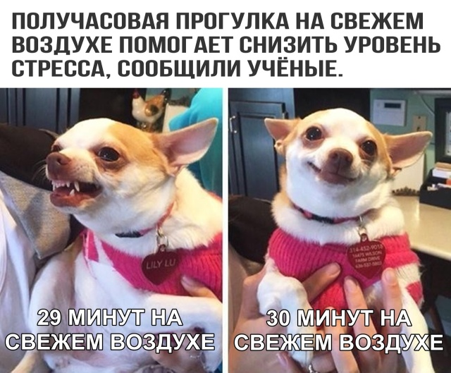 podborka_vecher_11.jpg