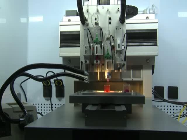 Израильские ученые напечатали на 3D-принтере сердце из человеческих клеток