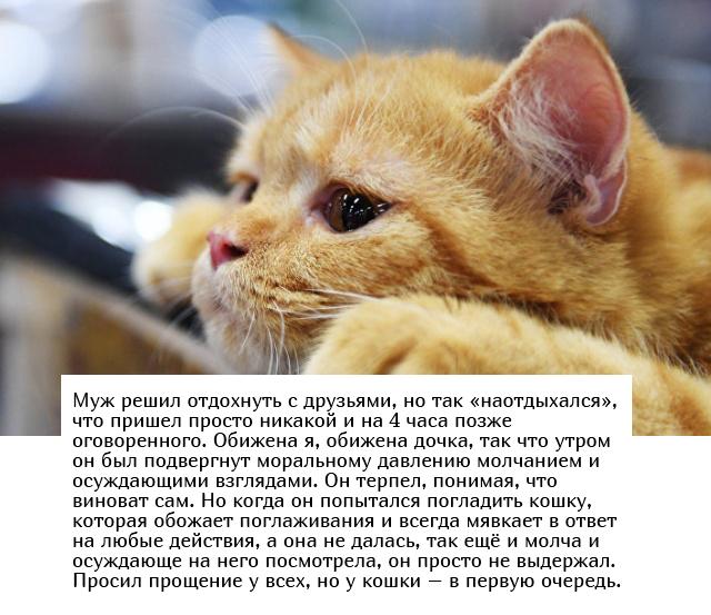 """""""Люди говорят"""" в социальных сетях (15 фото)"""